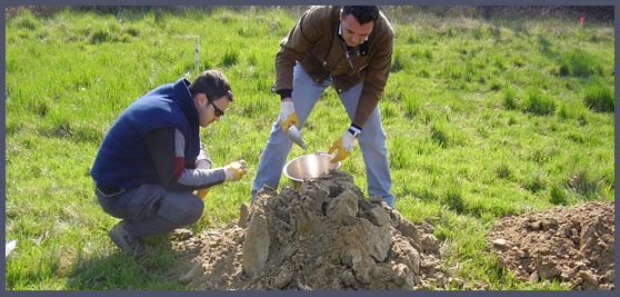 Georeflex geology geophysics topography for Soil and geology